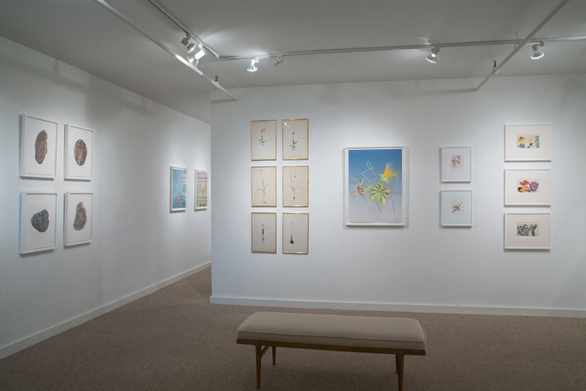 The Drawing Room Winter Salon Contemporary Drawings Prints
